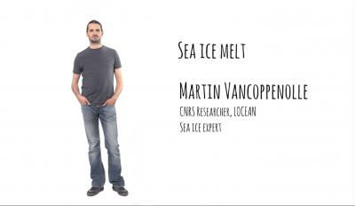 Sea ice melt